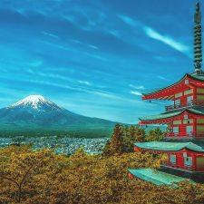 japan international business services